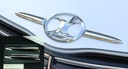 passo-sette_Emblem-leaf.jpg